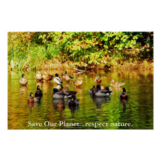 """""""Save Our Planet...respect nature."""" Poster"""