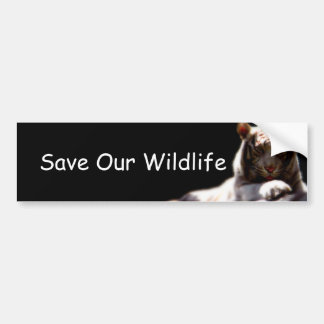 Save Our Wildlife Tiger Bumper Sticker