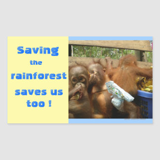 Save Rainforest and Cute Baby Orangutans Sticker