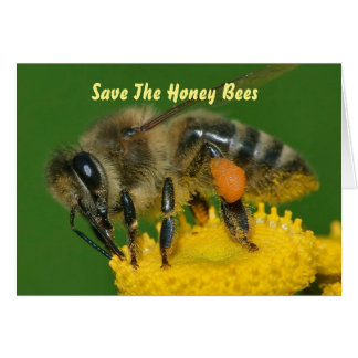 Save the Bees Green Card