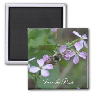 Save the Bees... Radish Flowers Magnet