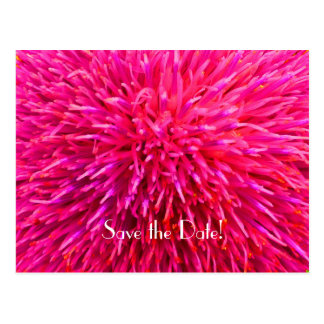 Save the Date 90th Birthday Party, Pink Abstract Postcard