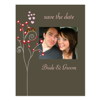 Save the Date Photo postcards, love birds Postcard