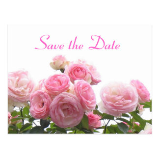 Save the date - pink roses post cards