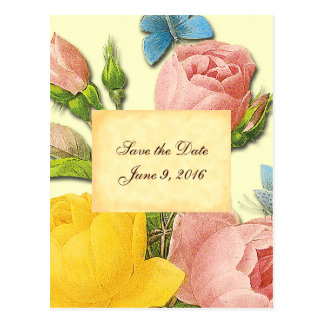 Save the Date Pink Yellow Vintage Roses Postcard