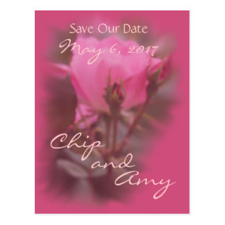 Save the Date Pk Knockout Rose-any occasion Postcard