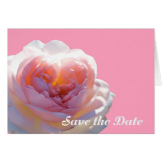 Save the Date Pretty Pink Rose Card