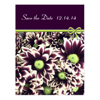 Save The Date Purple and Lime Daisies Postcard
