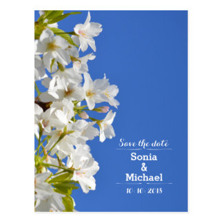 Save The Date Spring Blossoms Postcard