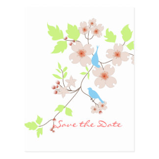 Save the Date two blue birds dogwoods Postcard