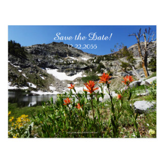 Save the Date Vow Renewal Ceremony Announcement Postcard