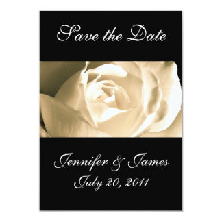 Save the Date White Rose Wedding Announcement