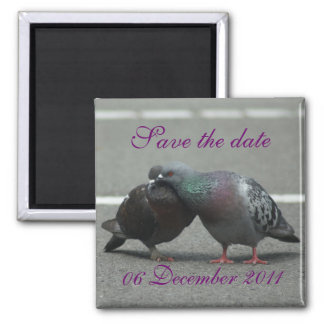 save the date with pigeons magnet