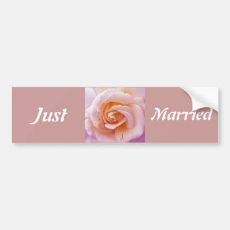 Save the date with Pink and Peach Garden Rose Bumper Sticker