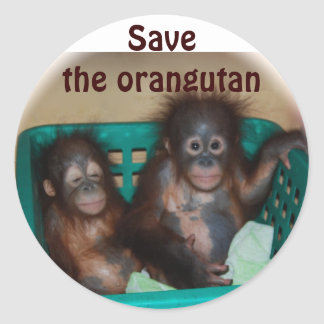 Save the Orangutan Classic Round Sticker