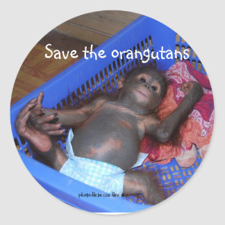 Save the Orangutans Cute Baby Classic Round Sticker