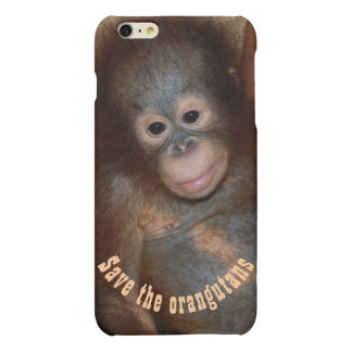 Save the Orangutans Jungle Wildlife