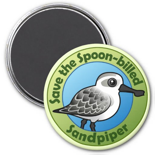 Save the Spoon-billed Sandpiper Magnet
