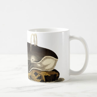 Save the Whales Coffee Mug