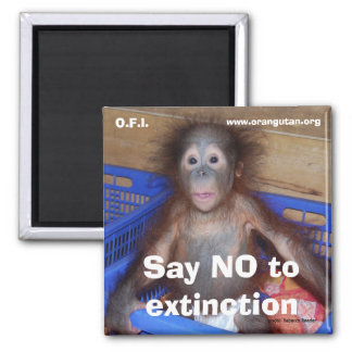 Save Wildlife Conservation Magnet