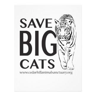 SaveBigcats Letterhead