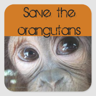 Saving Orangutans Square Sticker