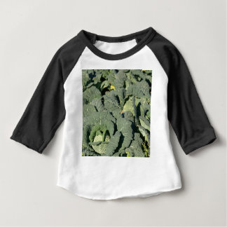 Savoy cabbage plants in a field. baby T-Shirt