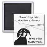 Savvy Sausage Wisdom - Obedience Classes Fridge Magnets