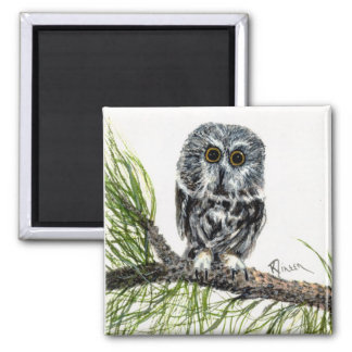 Saw Whet Owl Magnet