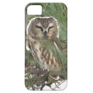 Saw Whett Owl Sleeps outside Motel on Jersey Shore Case For The iPhone 5