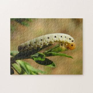 Sawfly Larvae Photo Puzzle with Gift Box