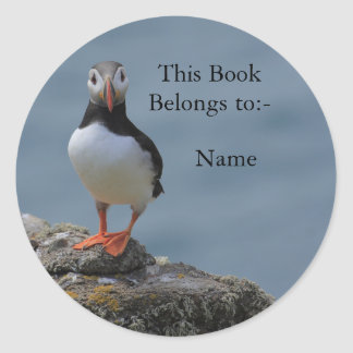 Say Cheese Puffin Sticker