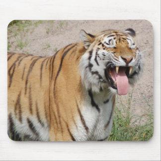 Say Cheese Tiger Mousepad