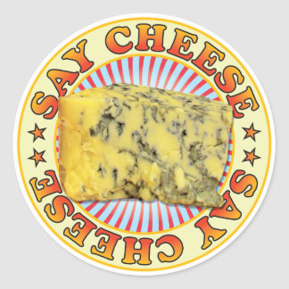 Say Cheese v3 Classic Round Sticker