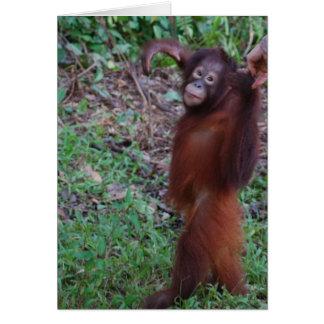 Say No to Bullies with Krista Orangutan Note Card