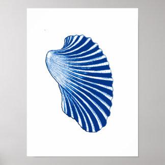 Scallop Shell, Indigo Blue and White Poster