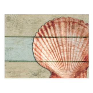 Scallop Shell Postcard