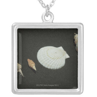 Scallop Silver Plated Necklace
