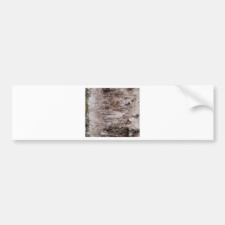 scaly white bark art bumper sticker