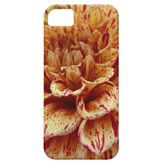 Scandalous Virtue Case For The iPhone 5