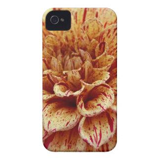 Scandalous Virtue iPhone 4 Case-Mate Case