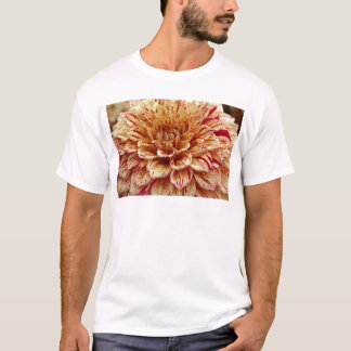 Scandalous Virtue T-Shirt