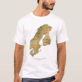 SCANDINAVIAN MAP Ladies' Short-sleeve Top