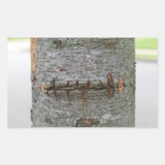 Scar Tree Trunk Sticker