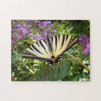 Scarce Swallowtail Butterfly Photo Puzzle