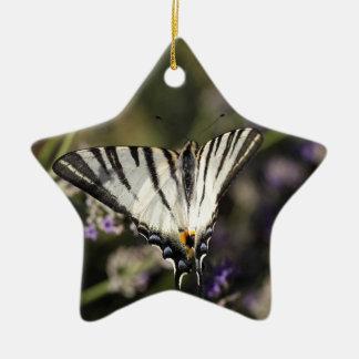 Scarce Swallowtail (Iphiclides podalirius) Ceramic Star Ornament