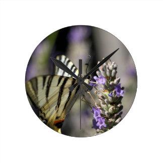 Scarce Swallowtail (Iphiclides podalirius) Wallclock