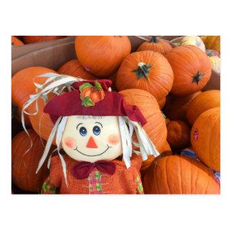 Scarecrow & Pumpkins Postcard