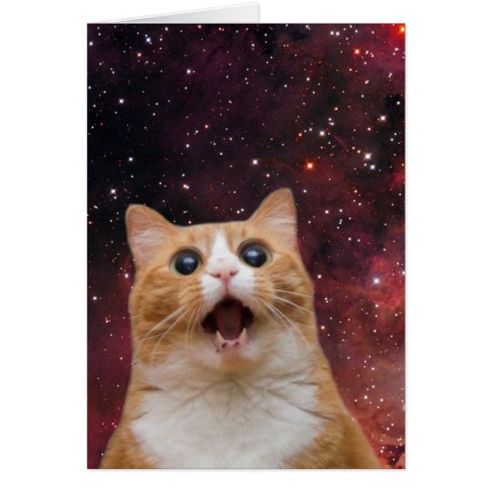 scaredy cat in space card
