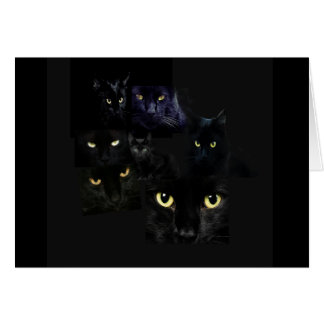 Scaredy Cats Greeting Card